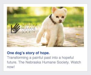 Nebraska Humane Society Facebook Ad