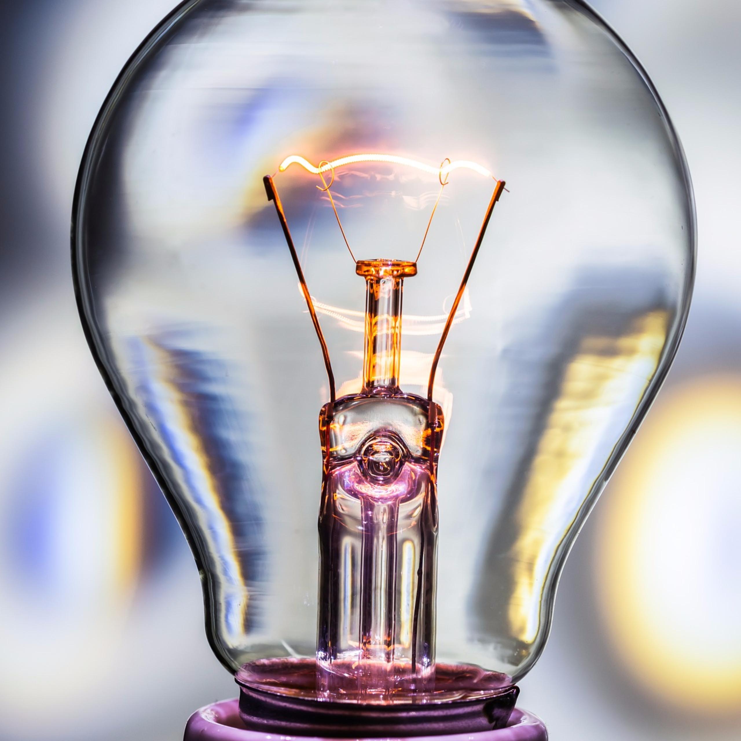 Entrepreneurship Electric Light Bulbs and Other Reasons to Celebrate Entrepreneurship